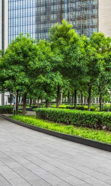 Five Brothers Enterprises Inc. Commercial Grounds Maintenance