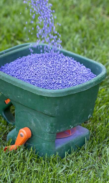 Five Brothers Enterprises Inc.  Lawn Fertilization