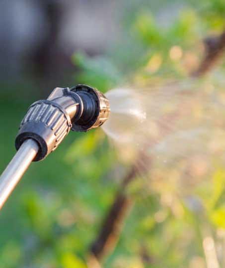 Five Brothers Enterprises Inc. Lawn Pest Control