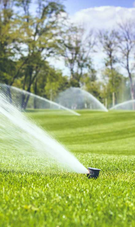 Five Brothers Enterprises Inc. Sprinkler Installation