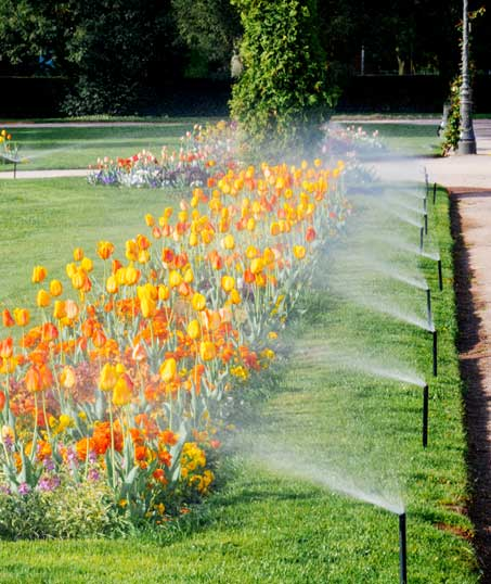 Five Brothers Enterprises Inc. Sprinkler Blowout