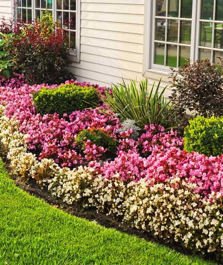 Five Brothers Enterprises Inc. Garden Design