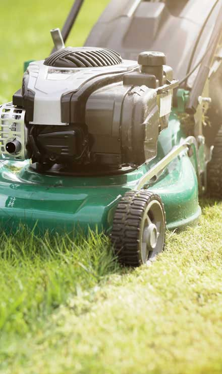 Five Brothers Enterprises Inc. Residential Lawn Mowing